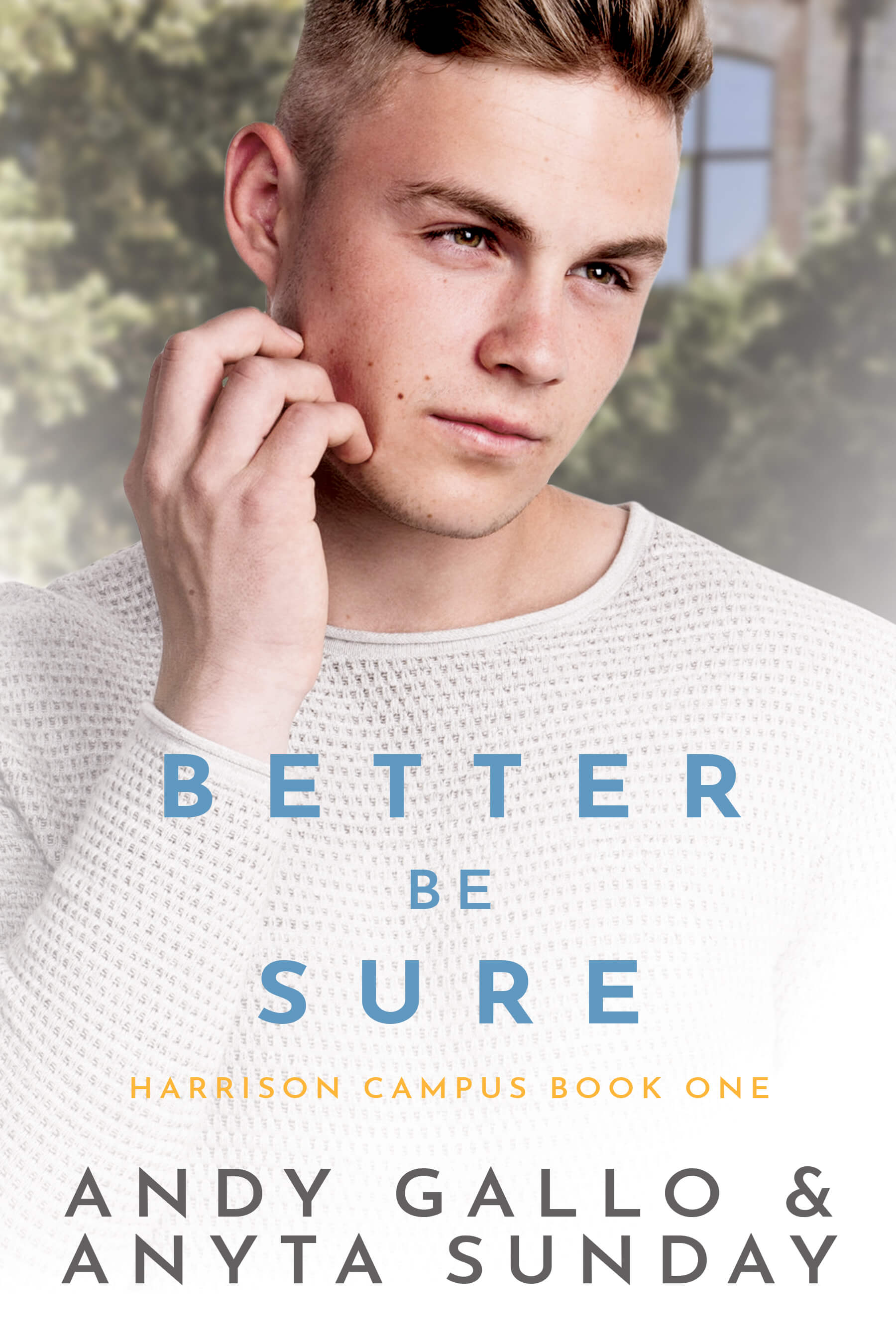 Gay Romance Novel Better be Sure by Anyta Sunday and Andy Gallo